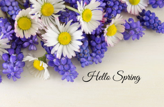 why and how to spring clean a house. spring flowers